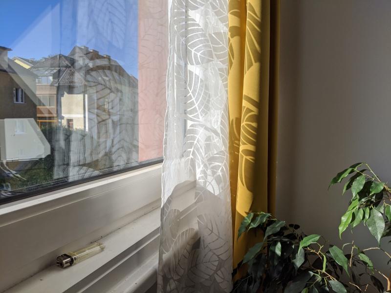 Windowsill yellow curtains plants September 27, 2020
